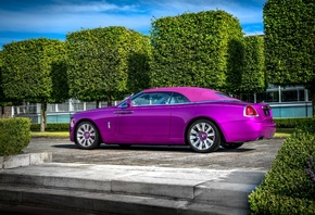 Rolls-Royce, Dawn in Fuxia