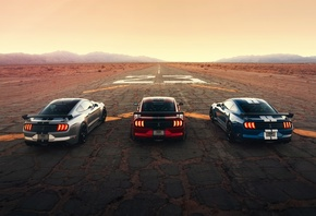 Ford, Mustang, Shelby, GT500, Форд, Мустанг