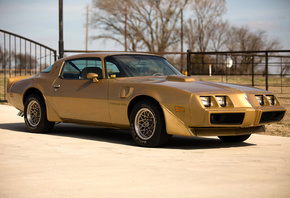 pontiac, firebird, 1979, trans am
