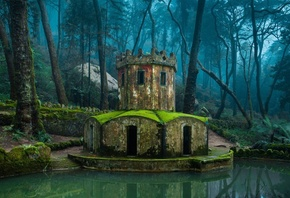 nature, Architecture, Forest, Old Building, Water