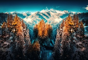 Landscape Nature Wallpapers, winter, Forest, Snow