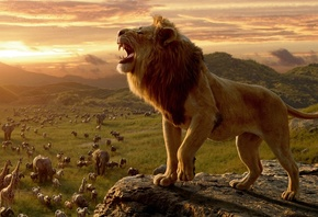 Lion, King, Movie
