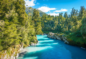 Blue River, mountains, summer, forest, South Island, New Zealand