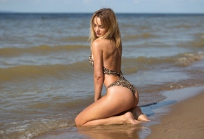 women, blonde, ass, animal print, kneeling, wet body, sea, sand, women outd ...