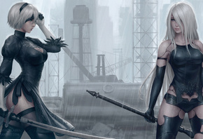 2b And A2, Nier, Automata