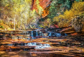 Zion, National Park, осень, водопад, каскад