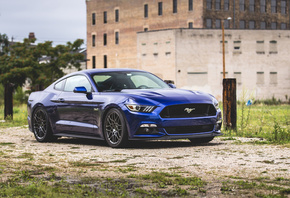 Ford, Mustang, blue sports coupe, blue