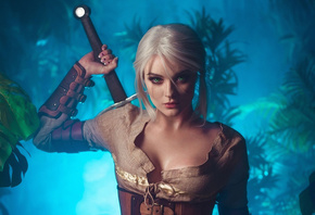 Witcher, Ciri, Art