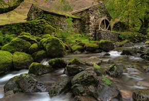 Камни, Англия, Cumbria, Borrowdale Valley, Мох, Водяная мельница, Природа