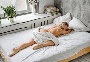 women, blonde, in bed, window, women indoors, brunette, plants, pillow, ass ...