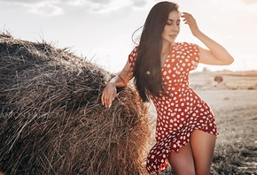 women, Anton Harisov, red dress, hay, women outdoors, brunette, long hair