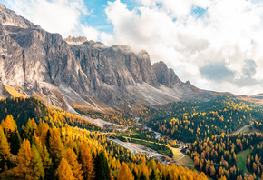 Осень, Горы, Италия, Лес, Passo Gardena, South Tyrol, Dolomite, Alps, Природа