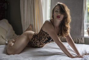 women, animal print, red lipstick, in bed, Jack Russell, women indoors, window, pillow, eyeliner