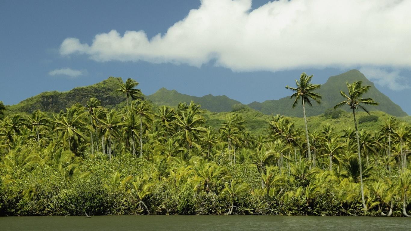 тропики, облака, ветер, острова