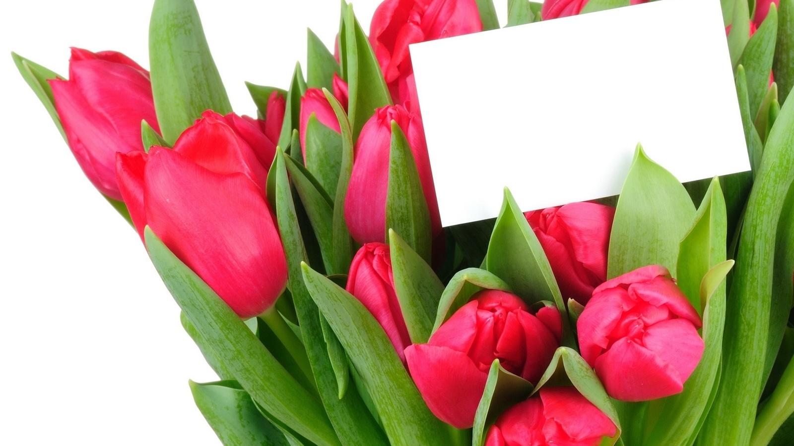 букет, алые тюльпаны, записка