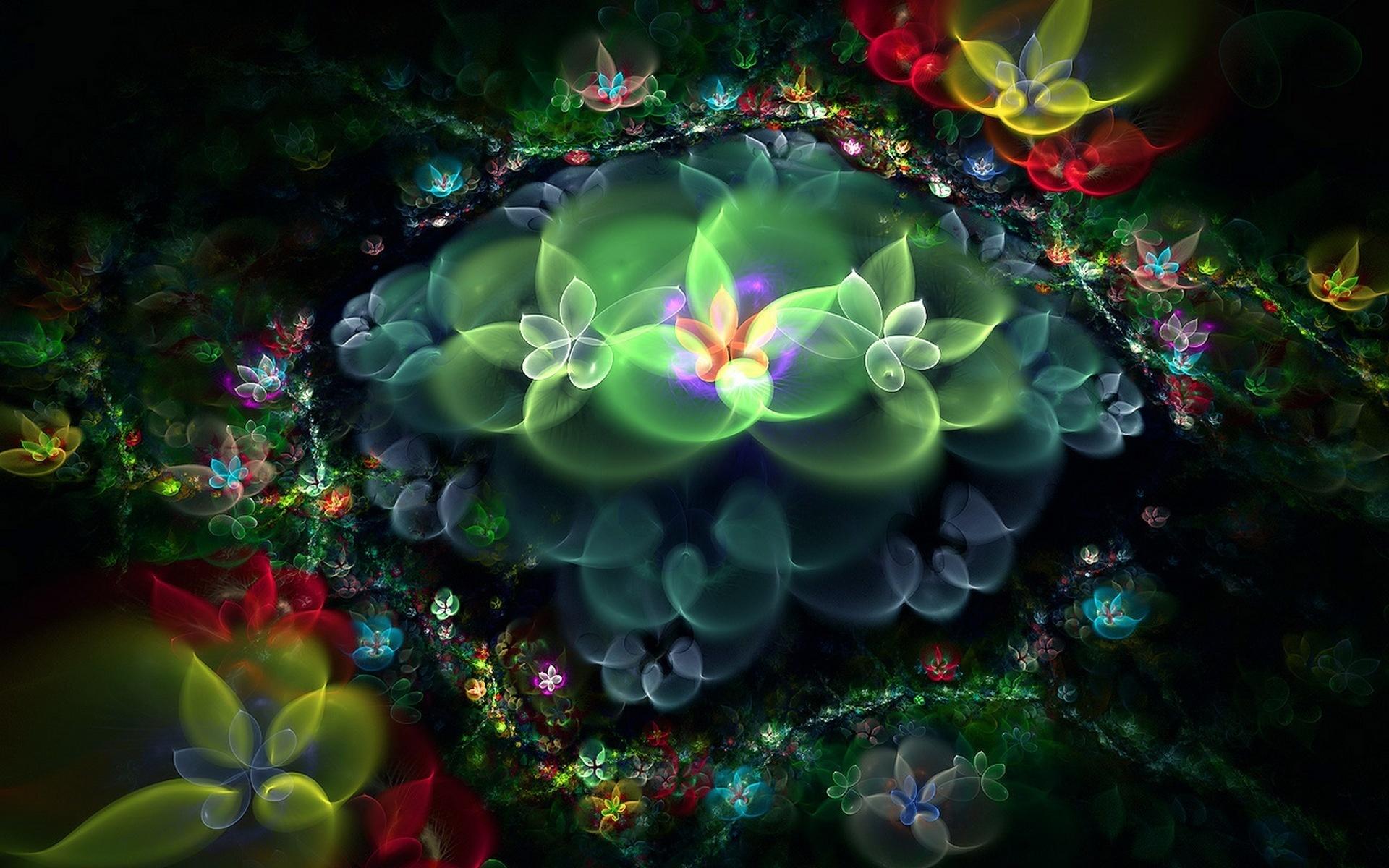 природа, цветы, растения