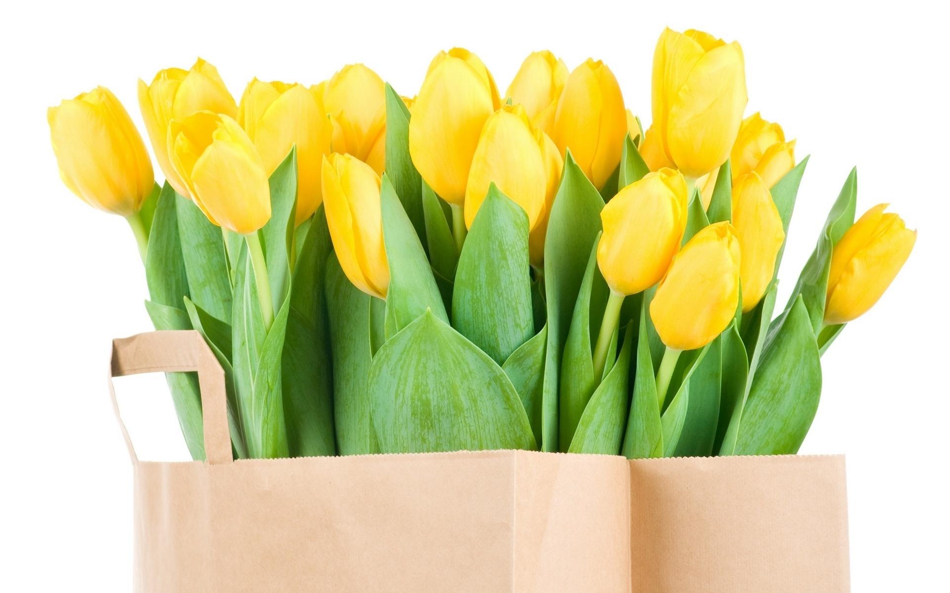 пакет с желтыми тюльпанами, цветы