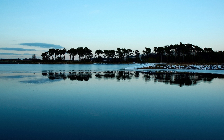 ранним утром, берег у озера, деревья