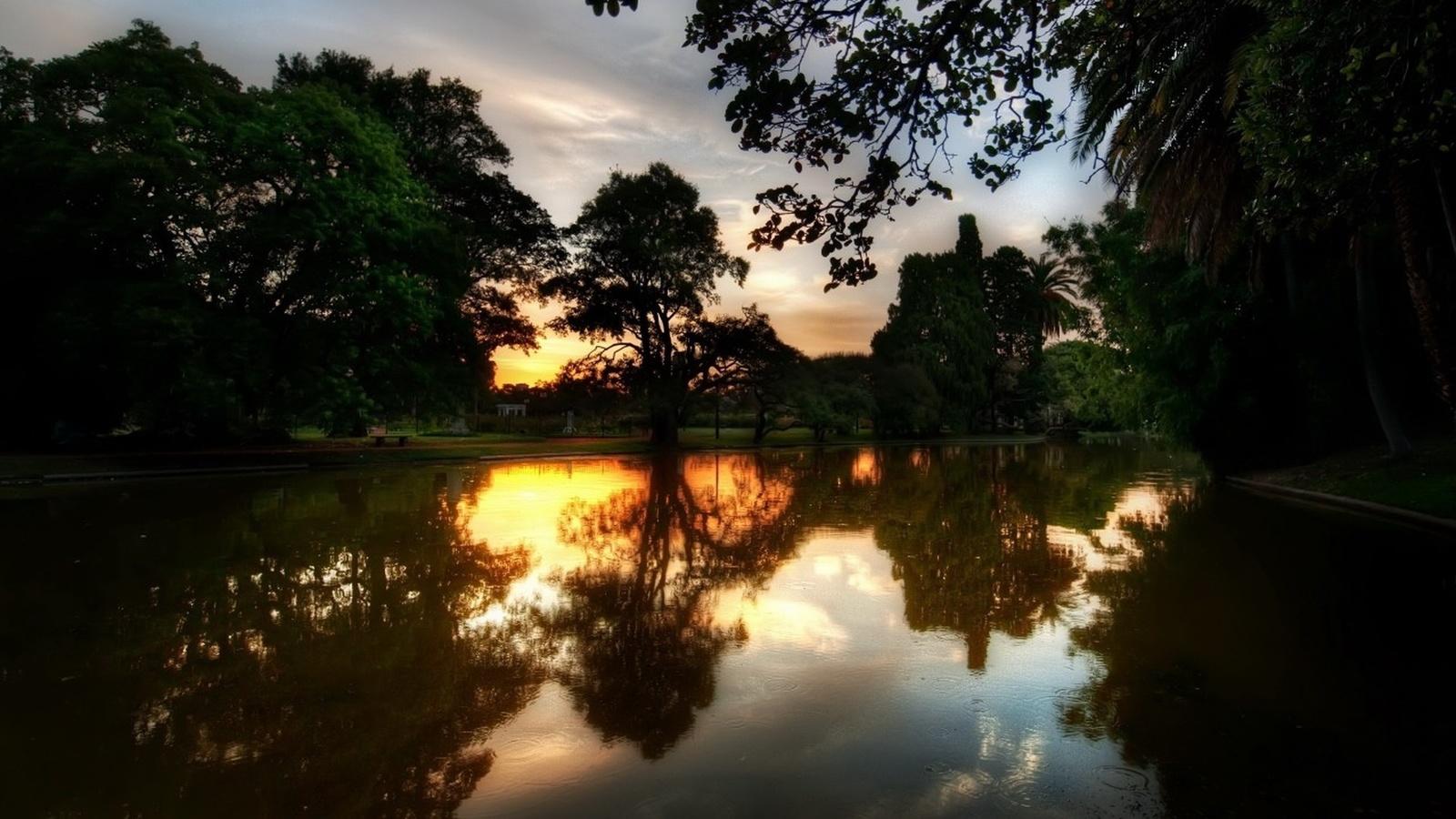 закат, свел солнца, деревья, небо, облака
