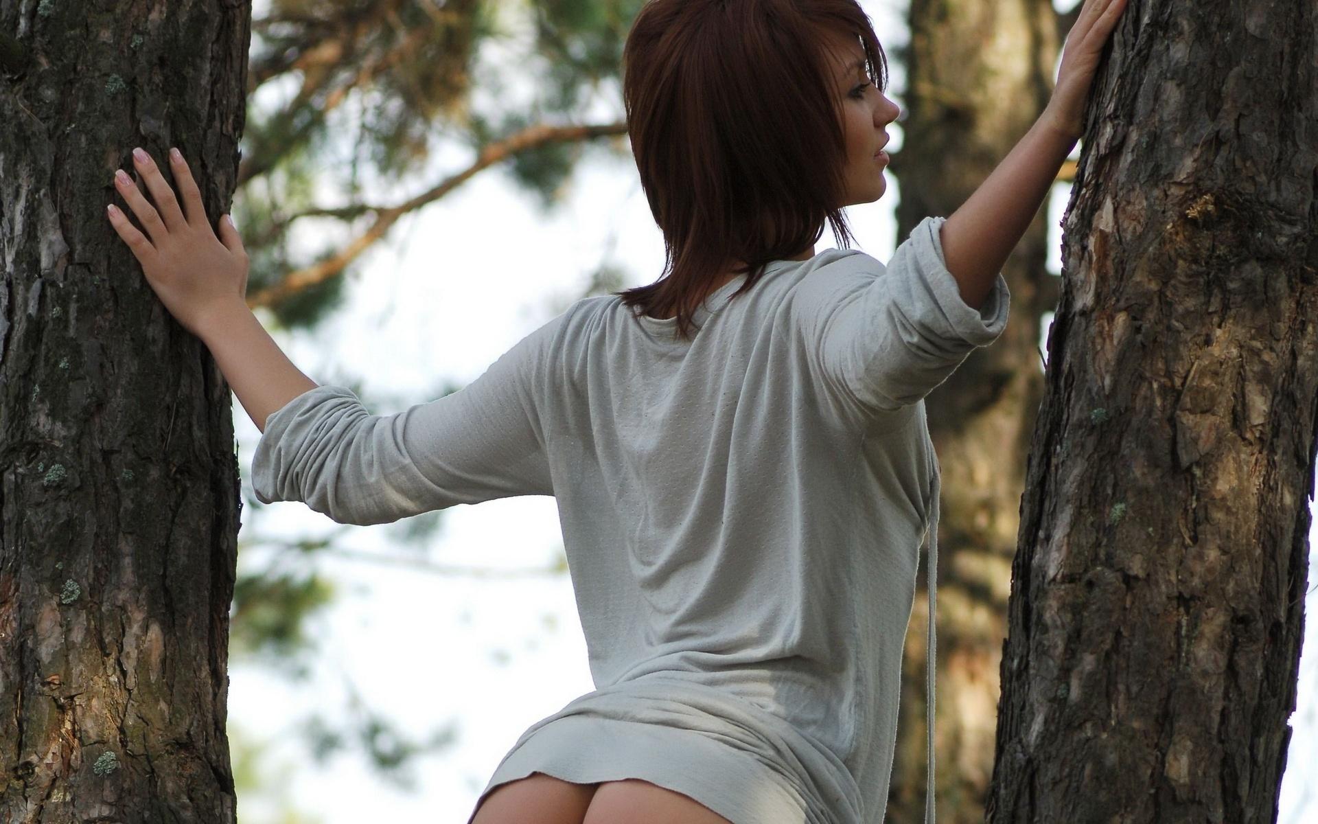 девушка, природа, футболка, ели