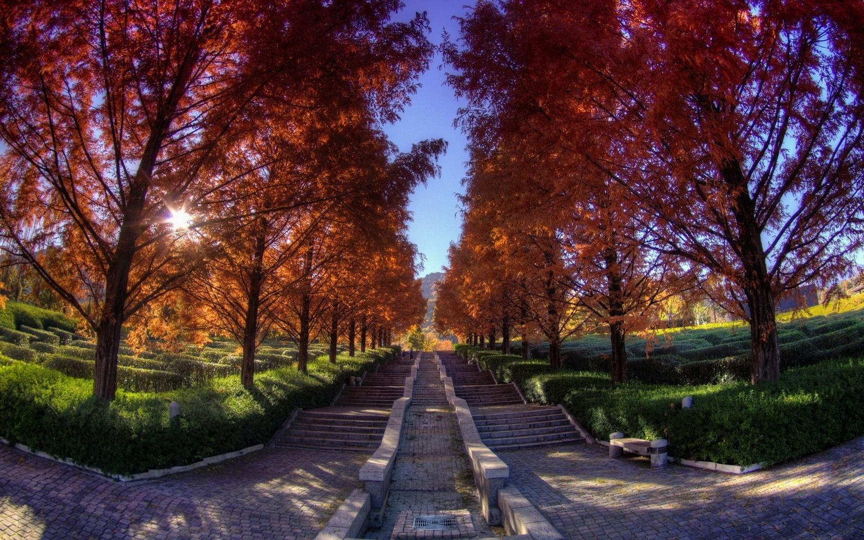 осенняя алея, каменные ступеньки, вдаль, небо, природа