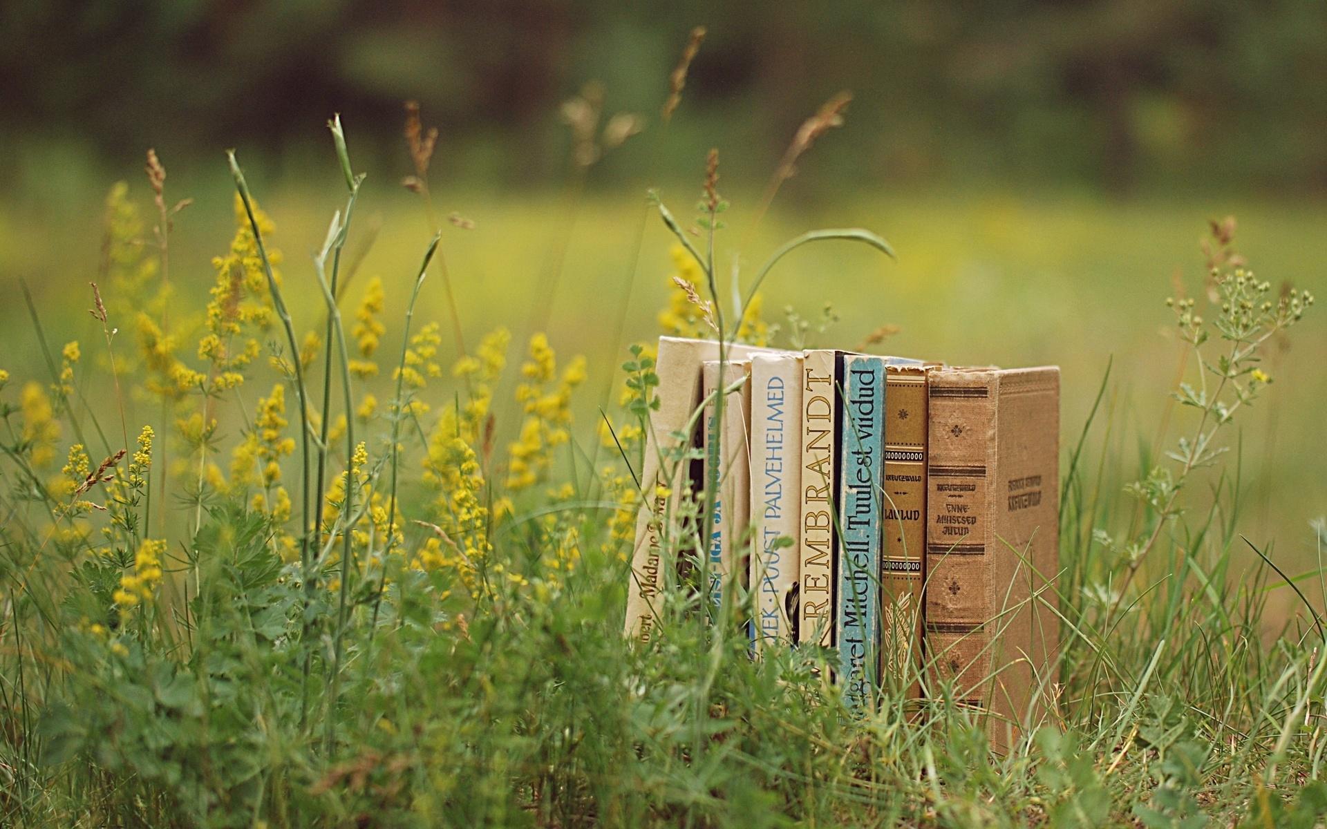 красиво, книги, поляна, трава, зелень