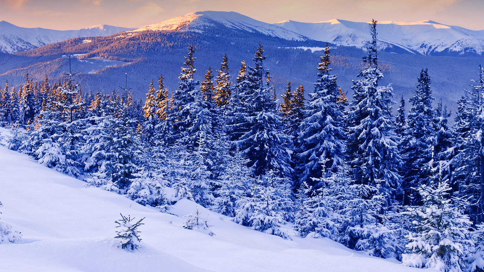 Картинки зима снег на рабочий стол