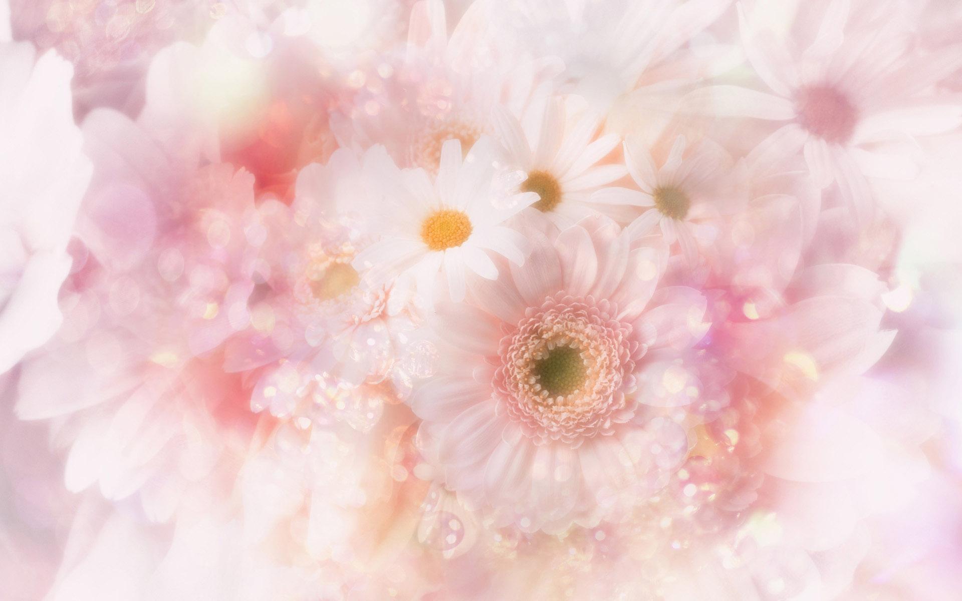 Картинки, картинка с днем рождения фон цветы
