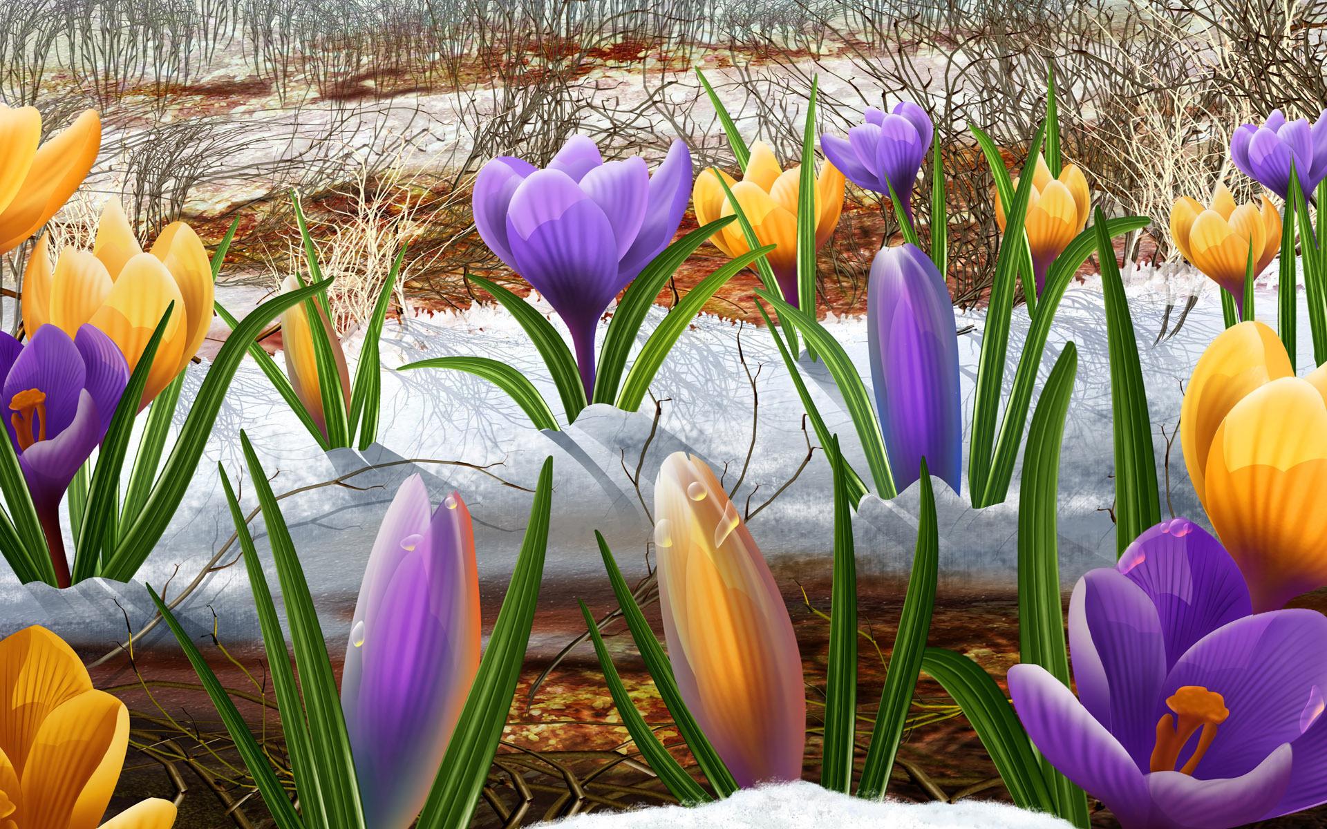Картинки, красивые открытки весна природа