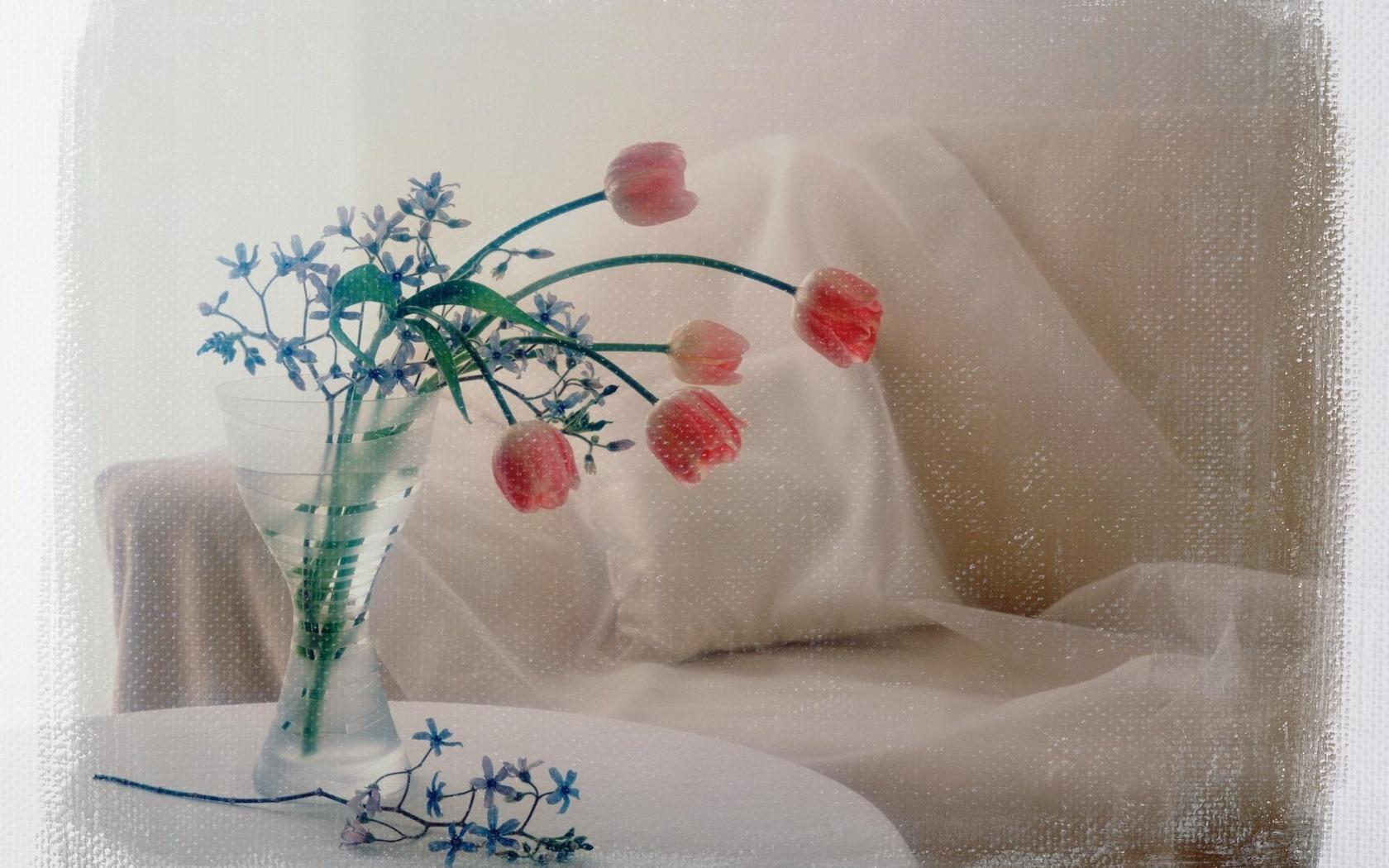обработка, фото, букет, диван, тюльпаны, ваза, Цветы