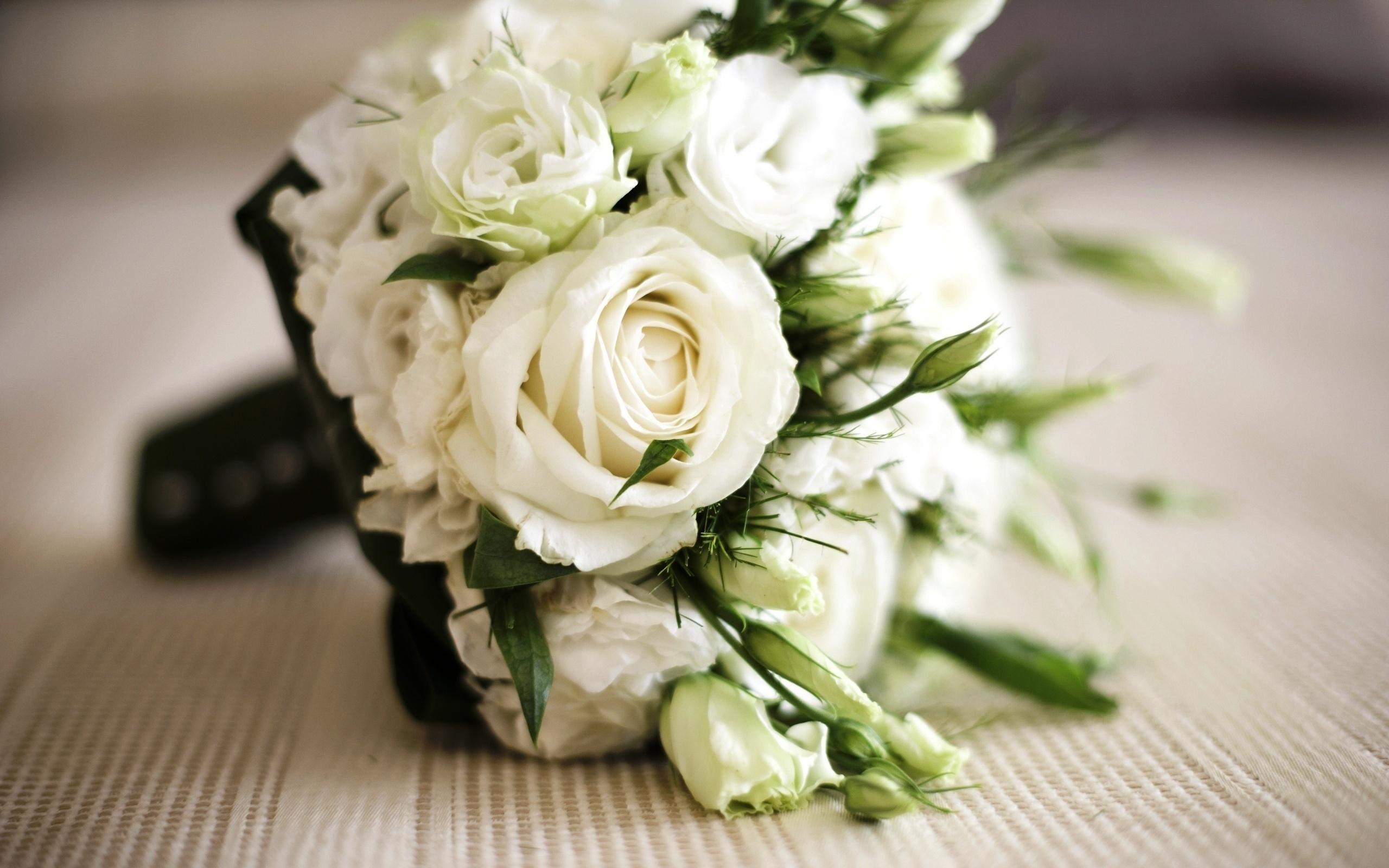 День, картинки с белыми розами красивые