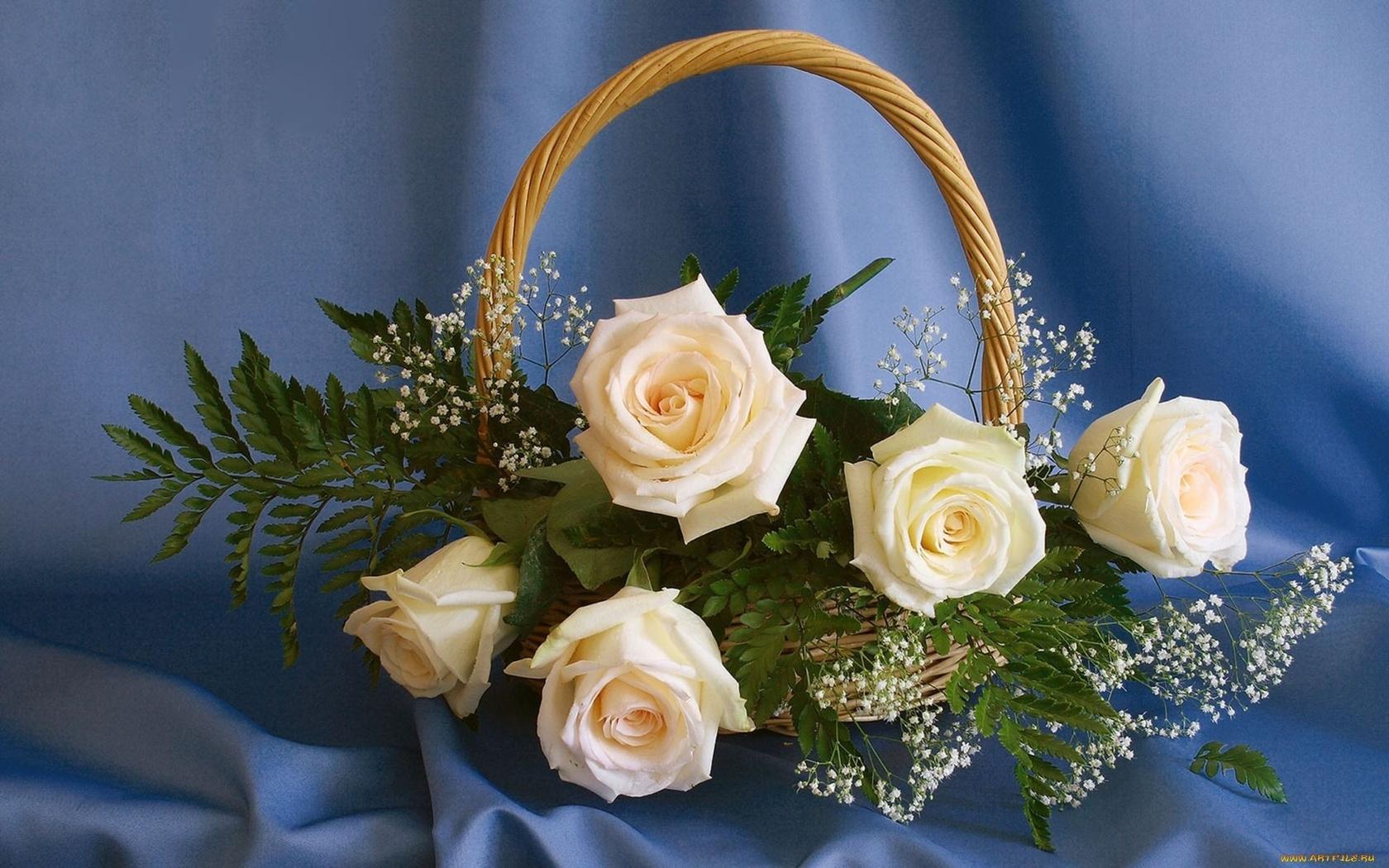 цветы, букет, корзина
