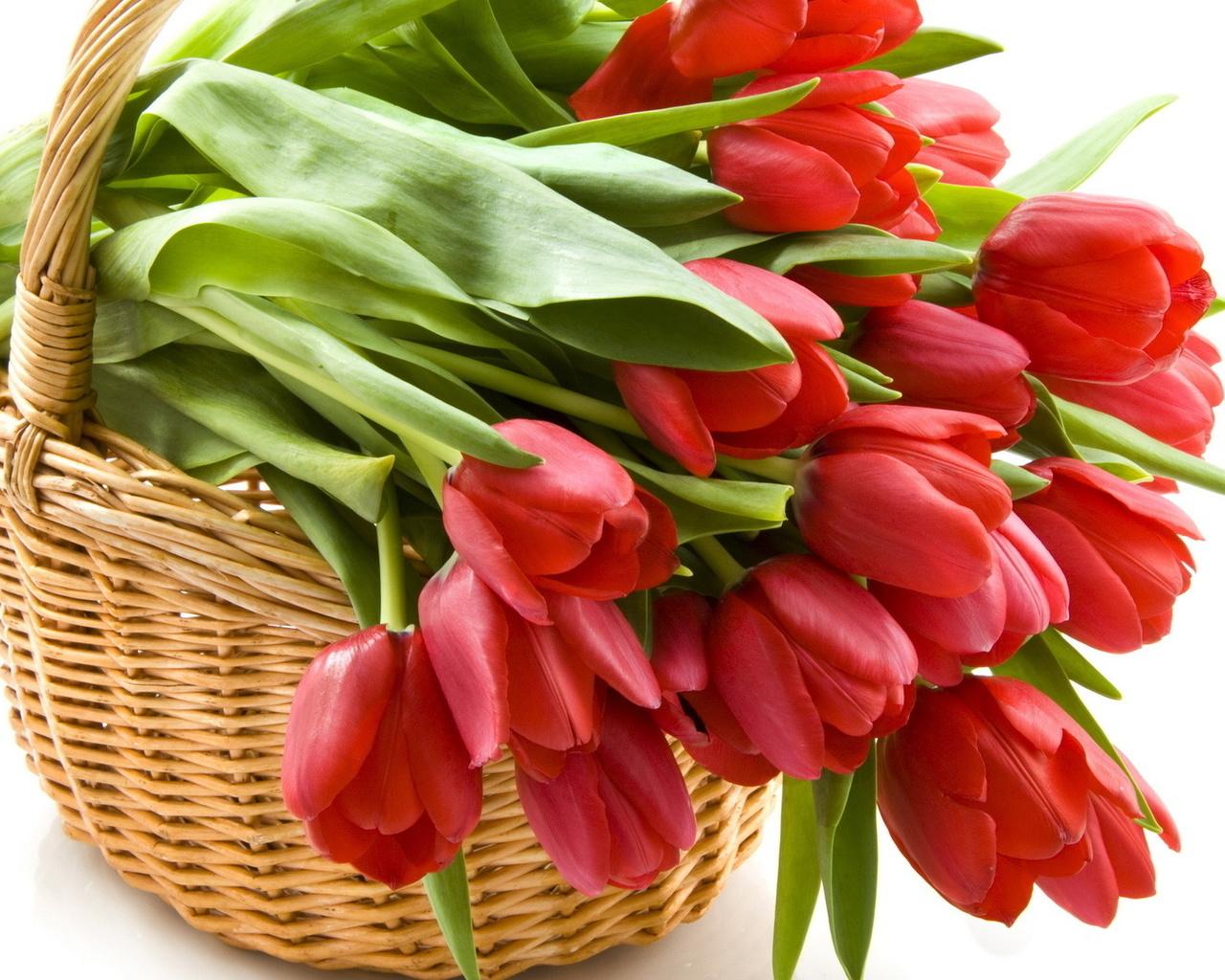 Открытка букеты тюльпанов