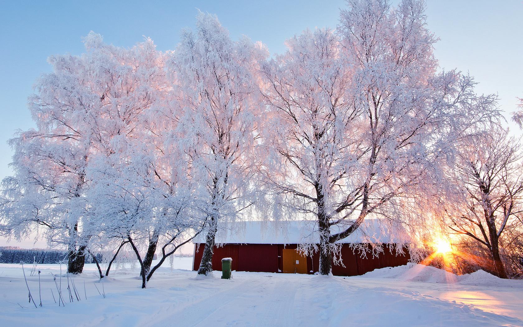 картинки зимняя пора что после