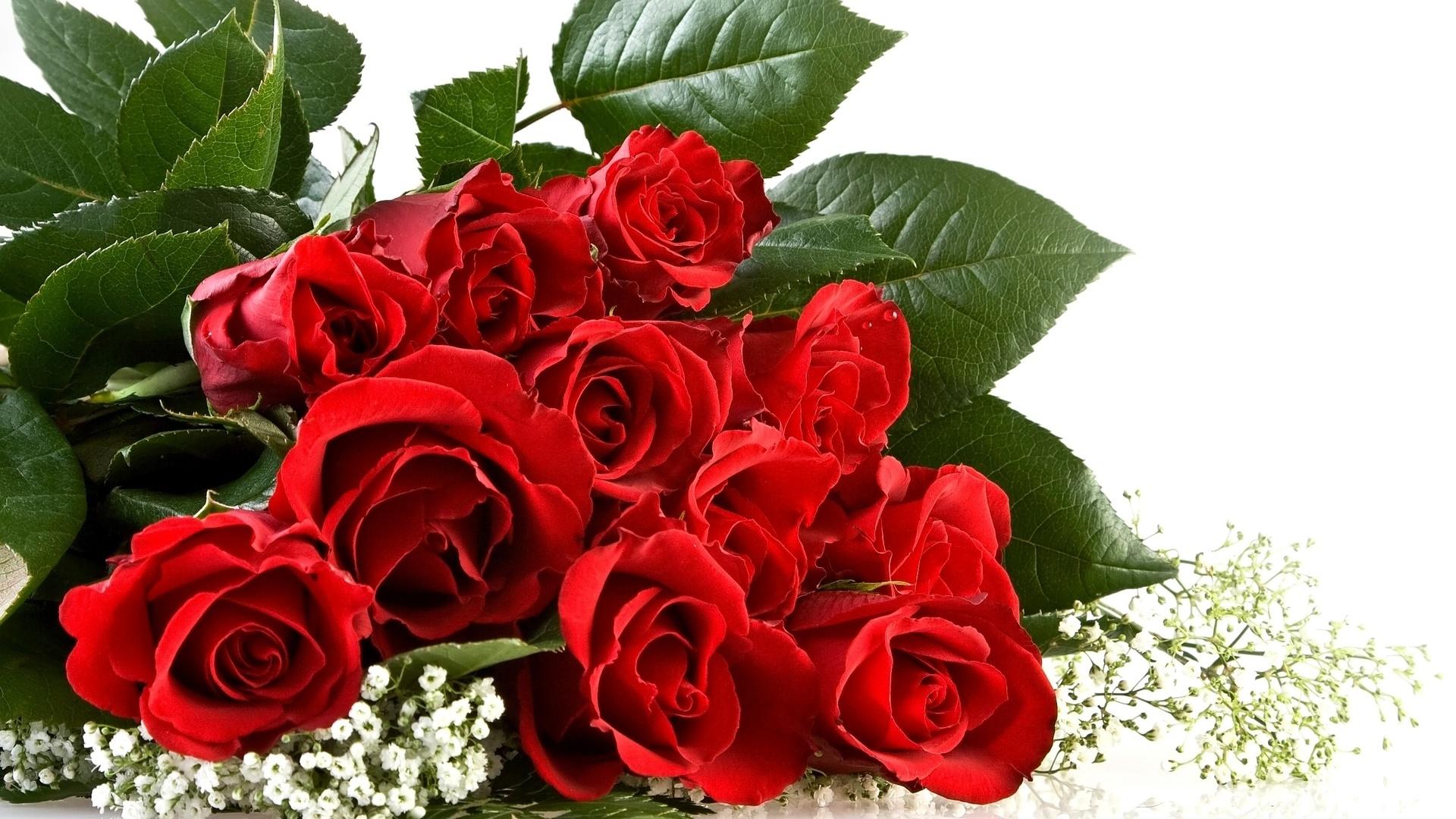 Открытка цветы розы для вас, днем рождения велосипедом