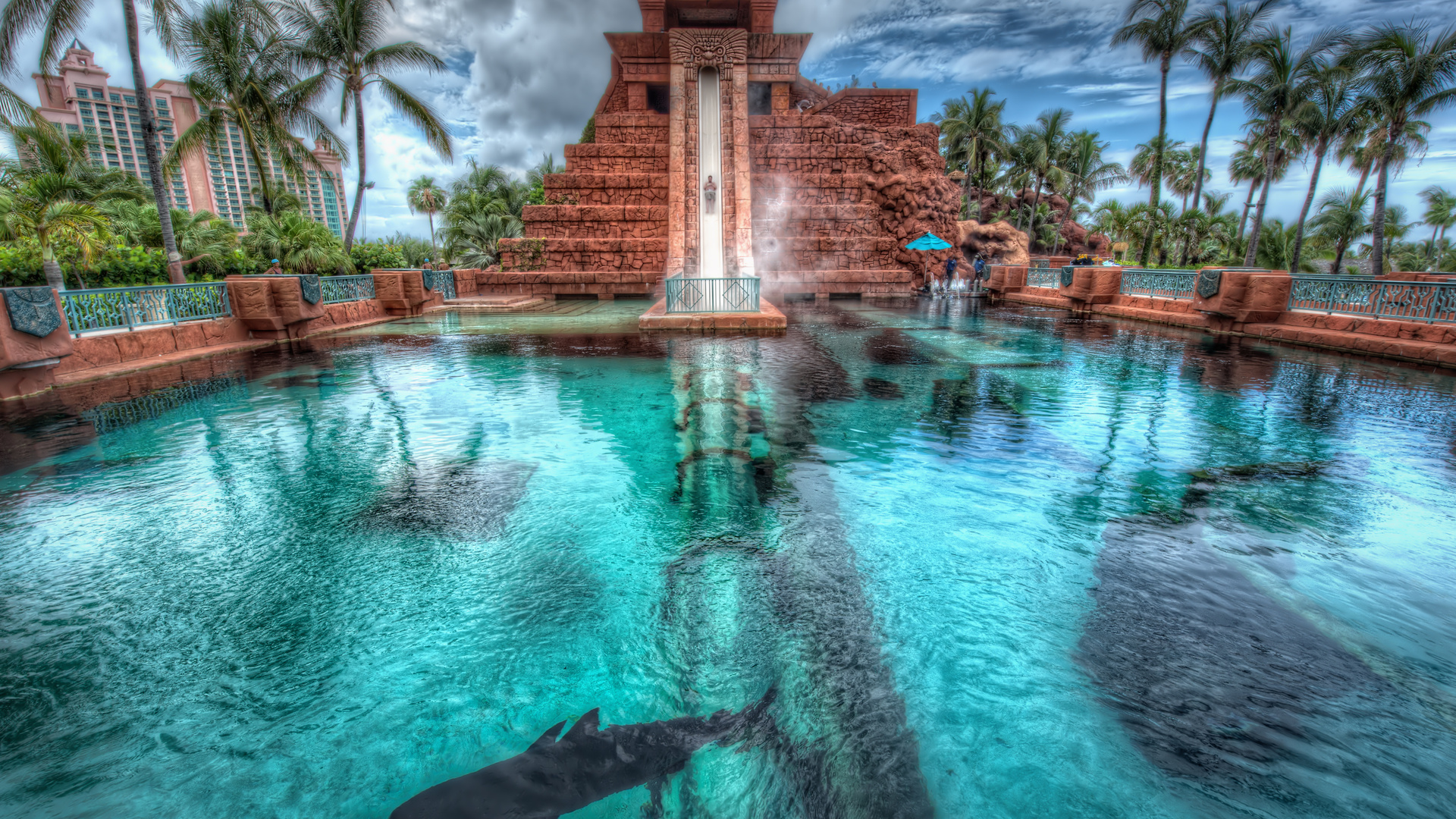 пальмы, багамские острова, нассау, bahamas, Nassau, atlantis hotel
