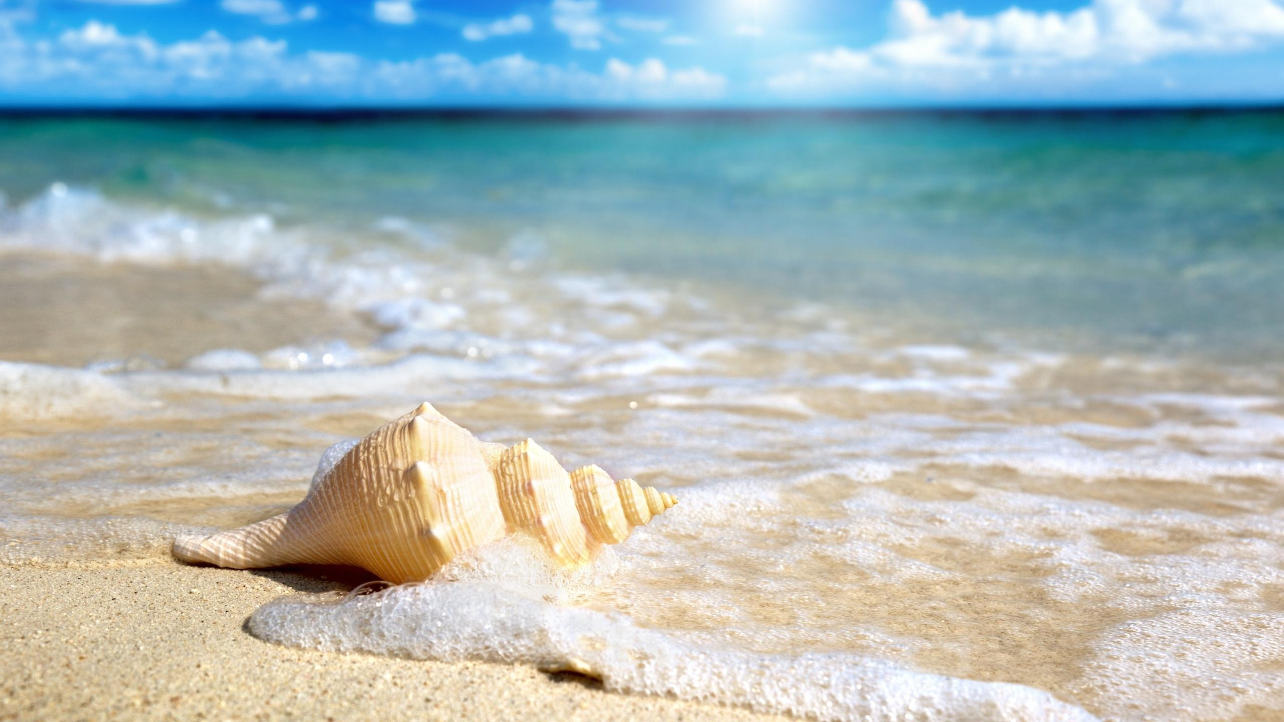 Море во сне бурлит, штормит — к несчастливой влюбленности или к заботам, какие явятся последствием неуместной горячности.