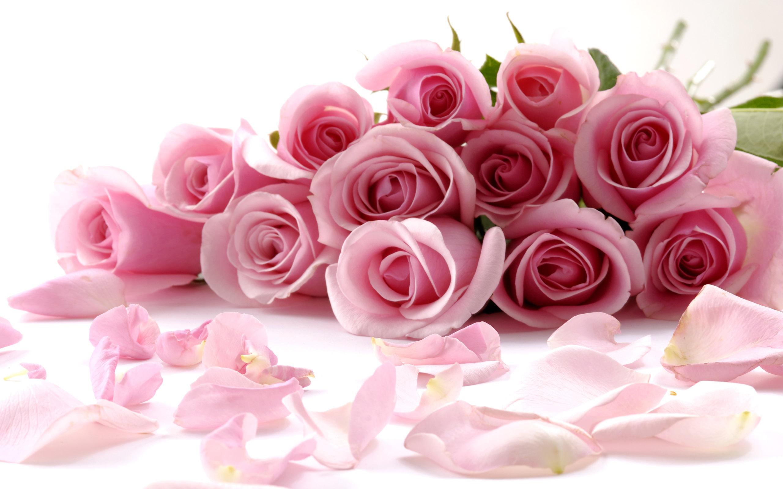 Нежные букеты роз фото