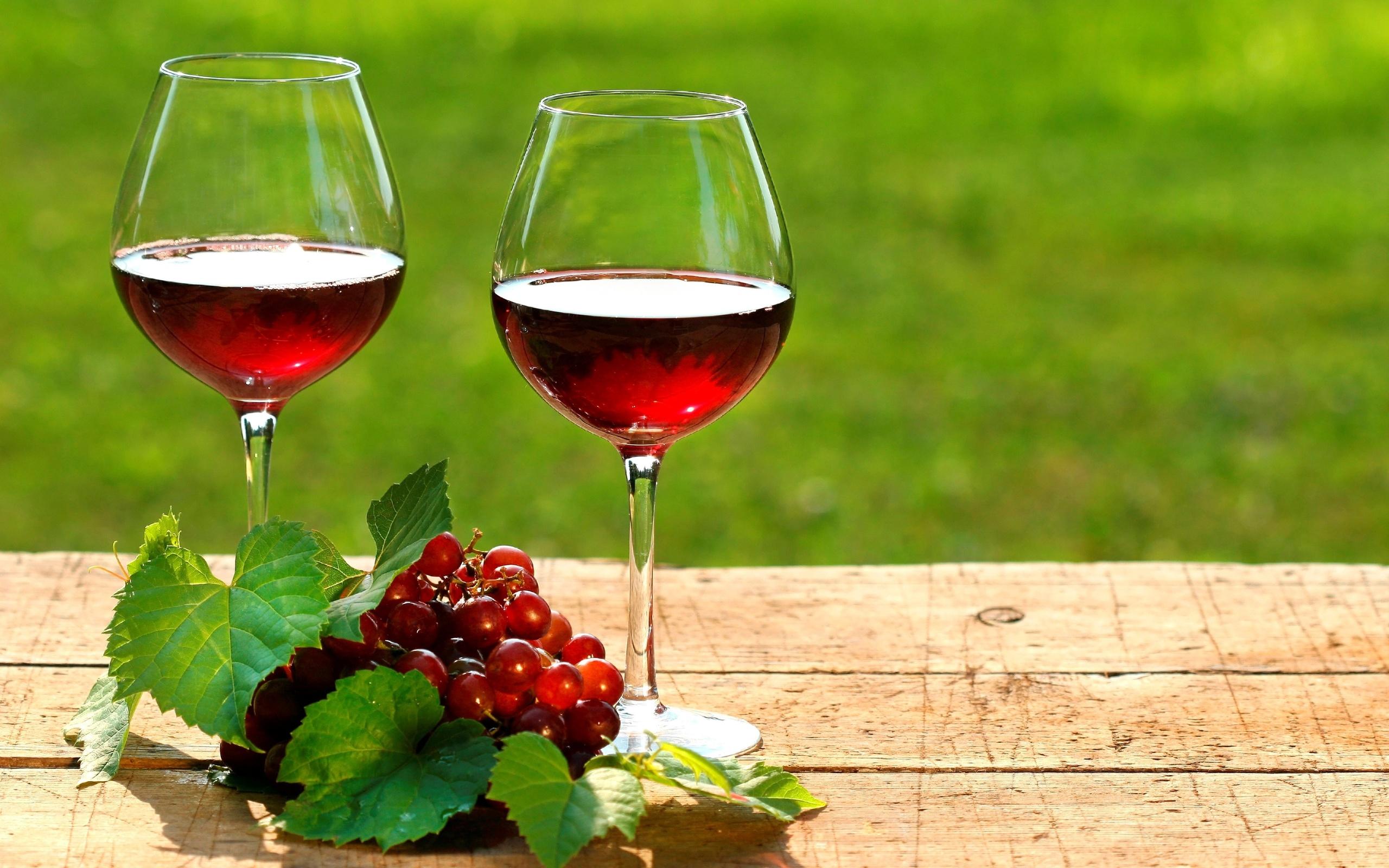 Картинки с красным вином, открытки медведь