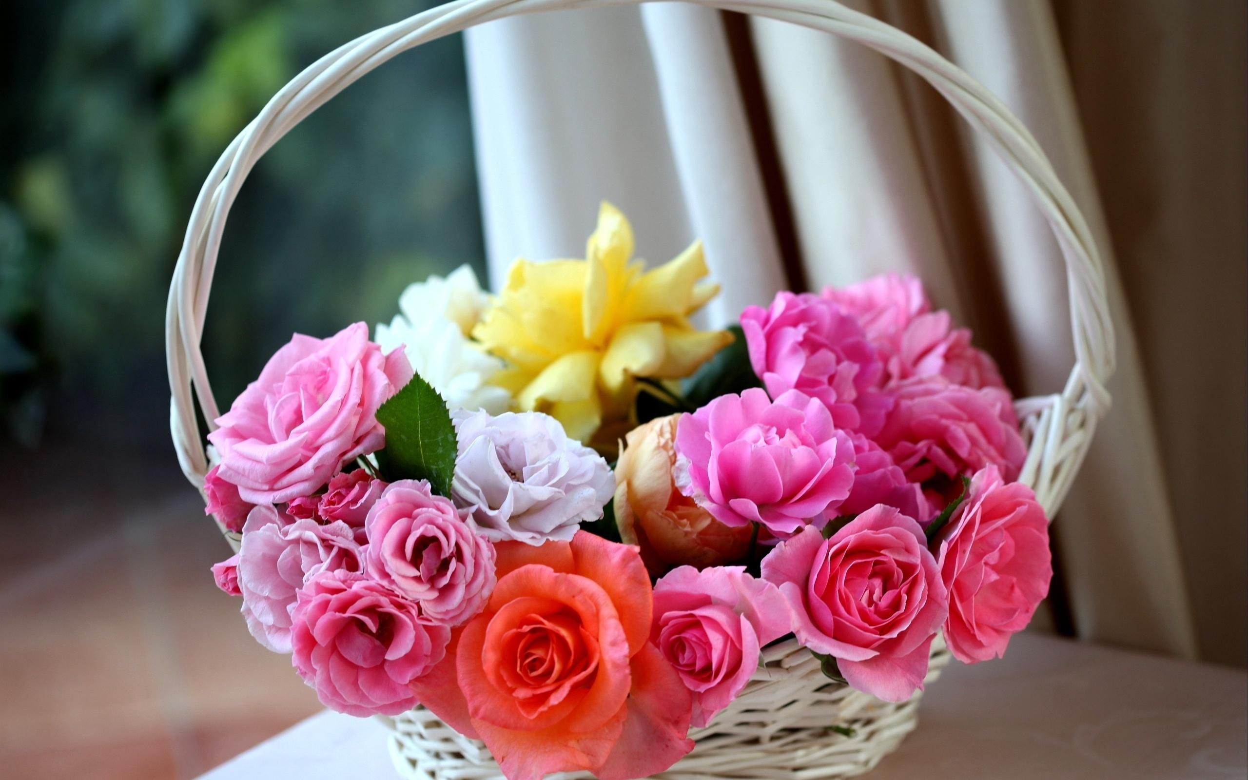 Открытки необычные розы