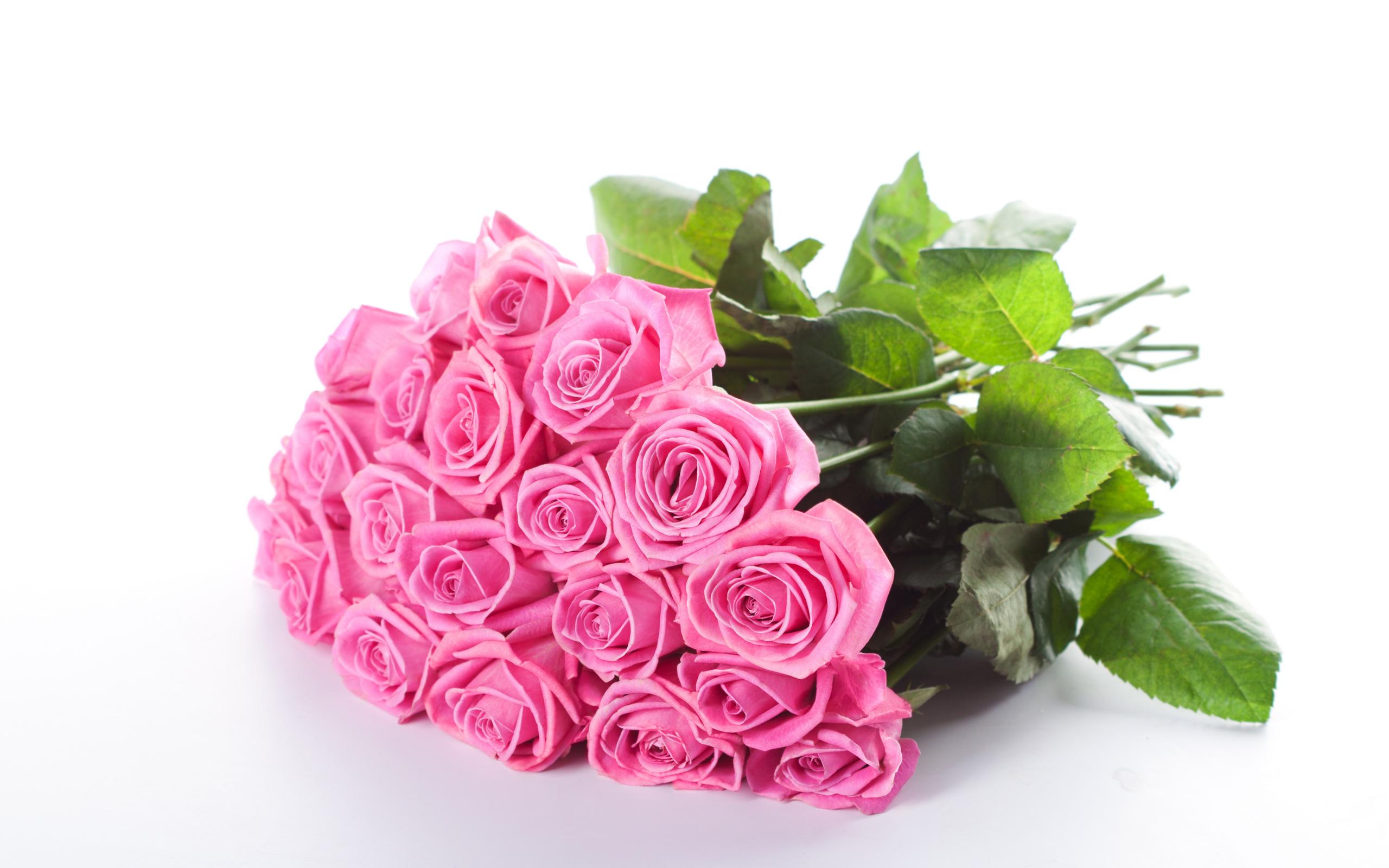 Которые можно, открытка розовый букет