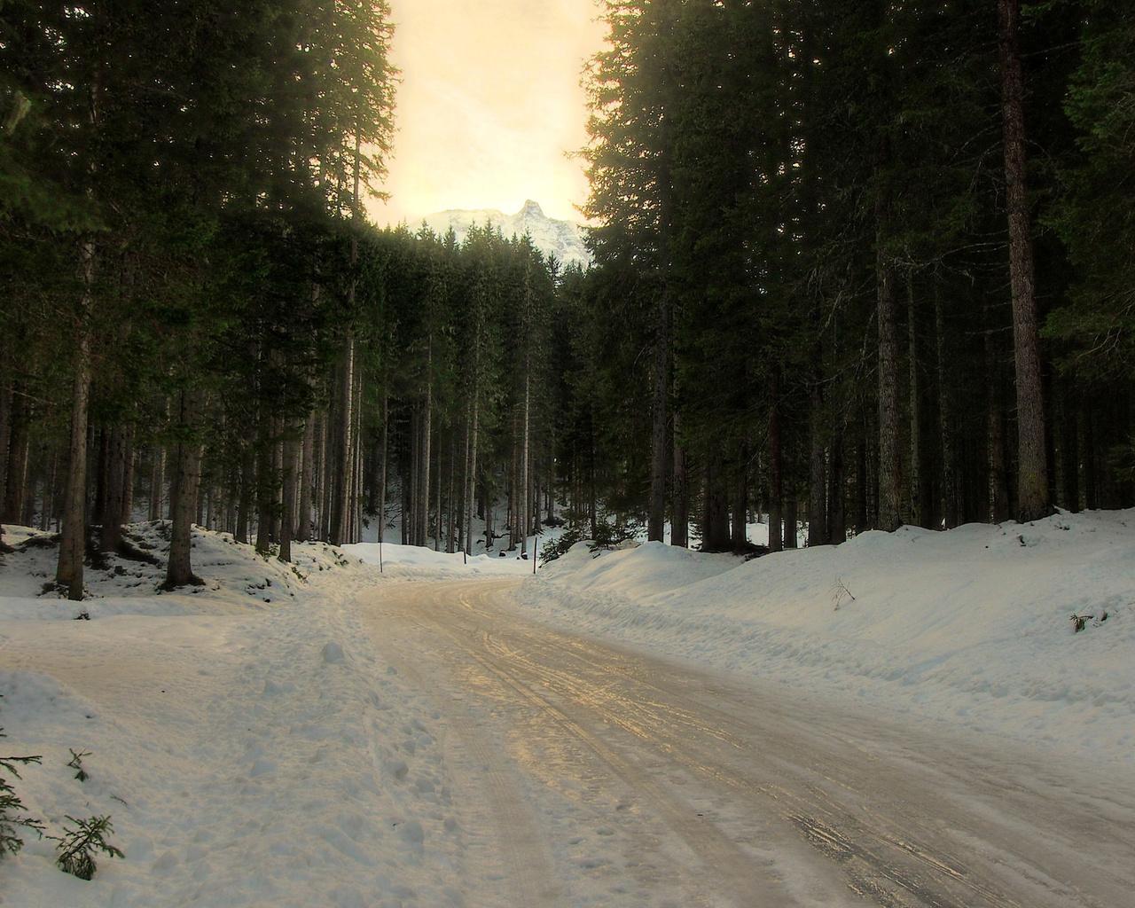 деревья, ель, зима, лес, снег, хвойные, поворот, Дорога