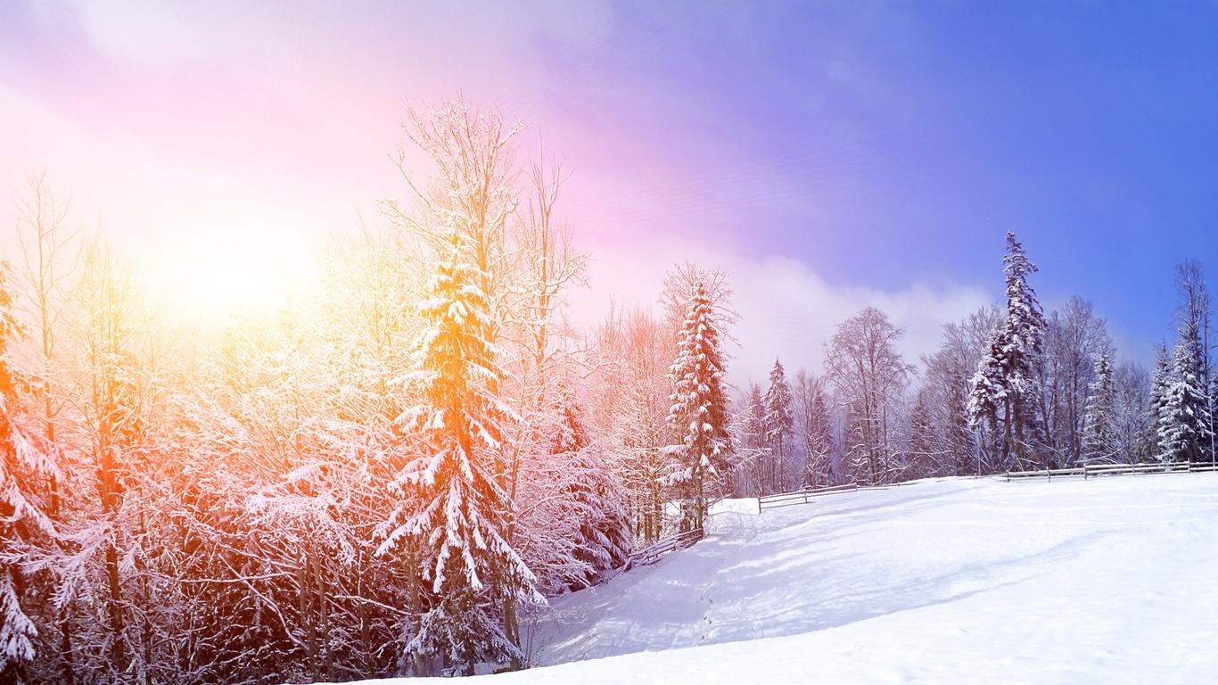 снег, деревья, Природа, зима, пейзаж, горы