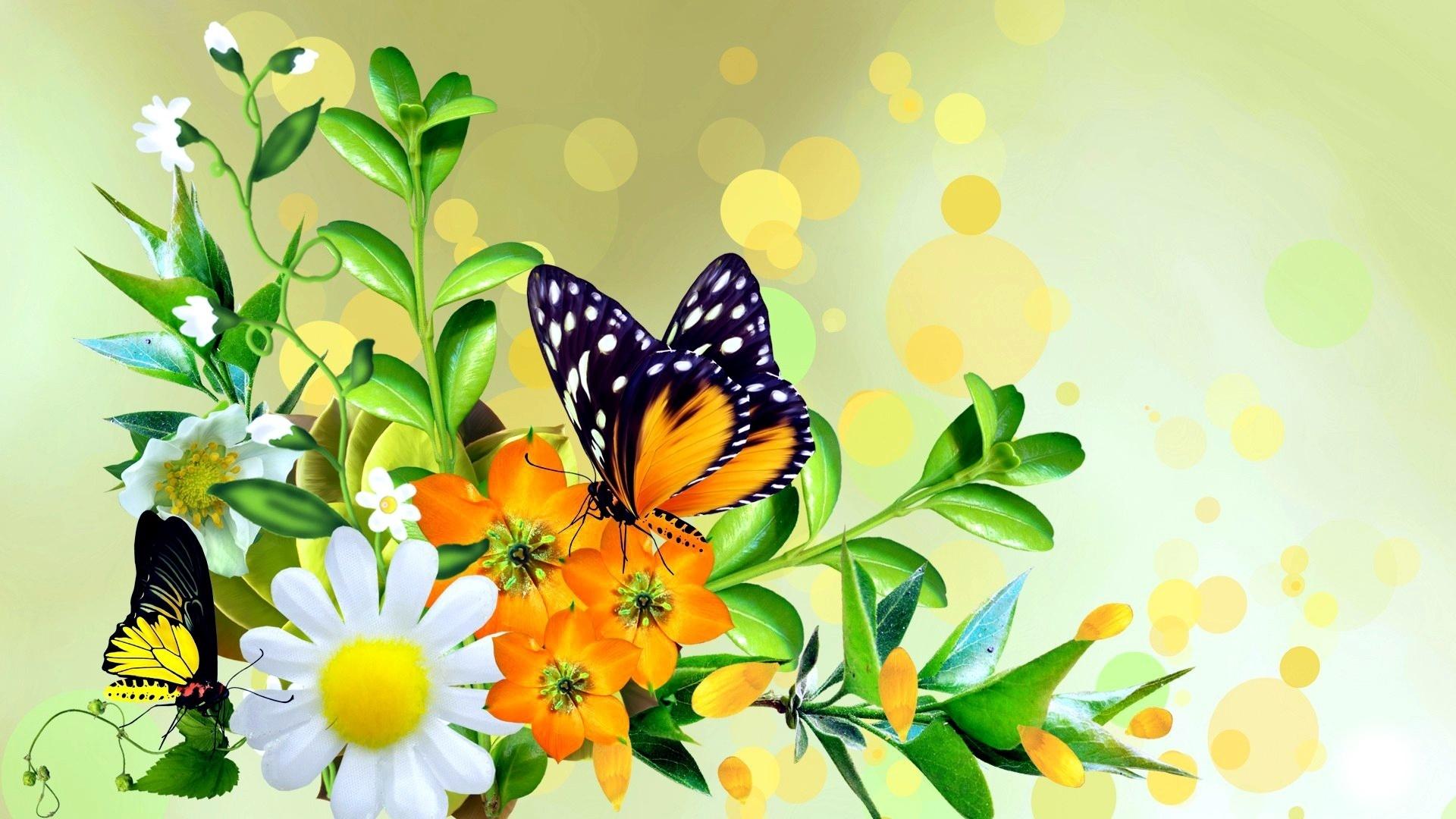 Красивые, открытка рождение бабочки