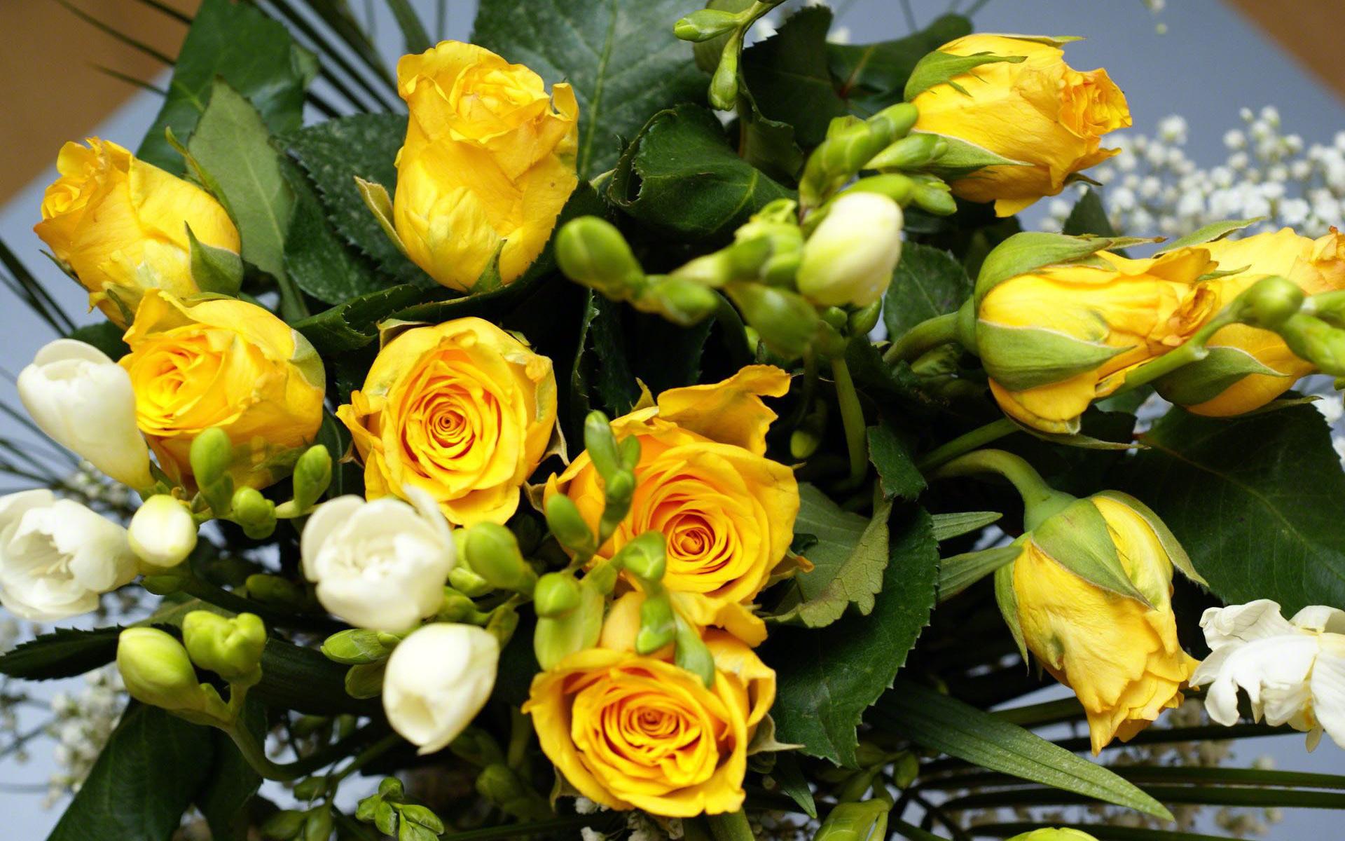 Цветы, природа цветов букет из роз