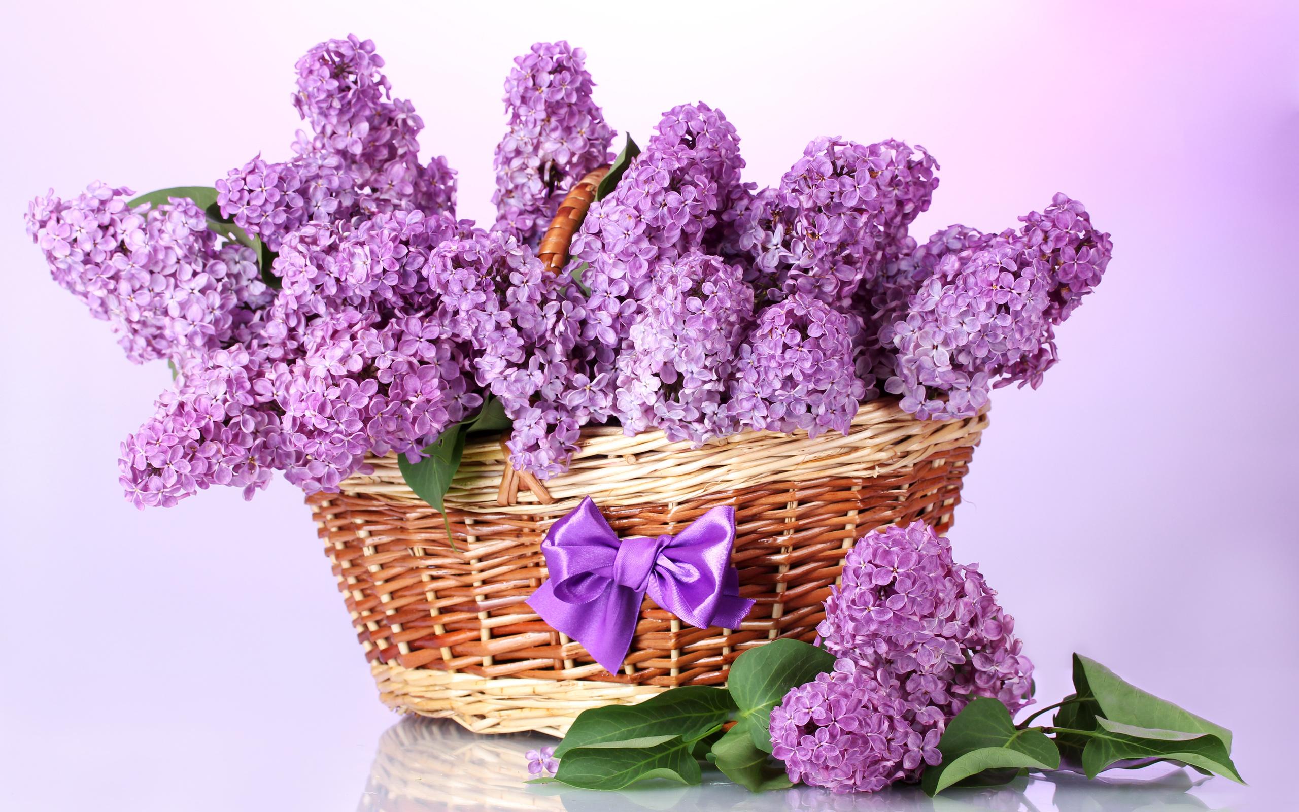 Красивые открытки с цветы, любовью