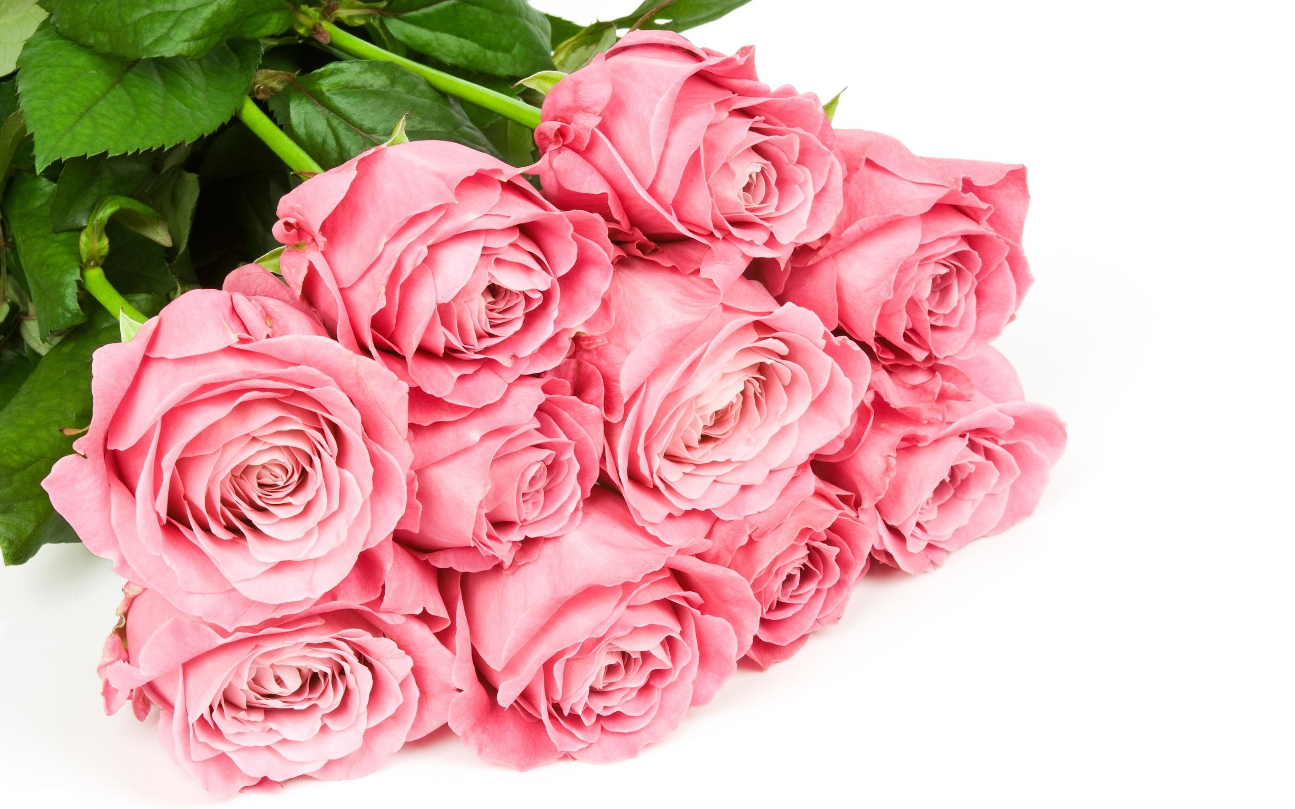 Картинка с букетом роз на белом фоне