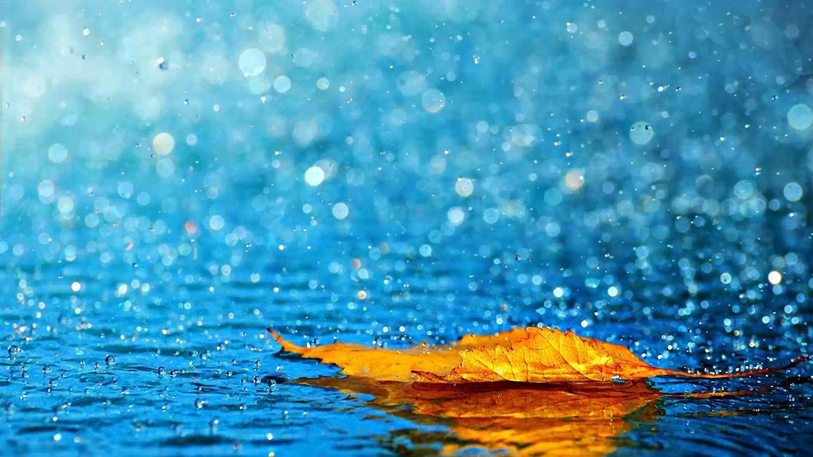 Анимацией, картинка про дождь