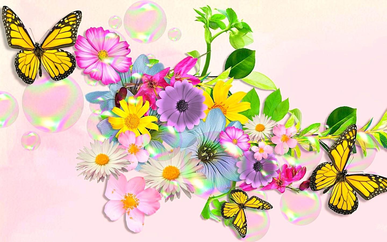 Красивые бабочки открытки