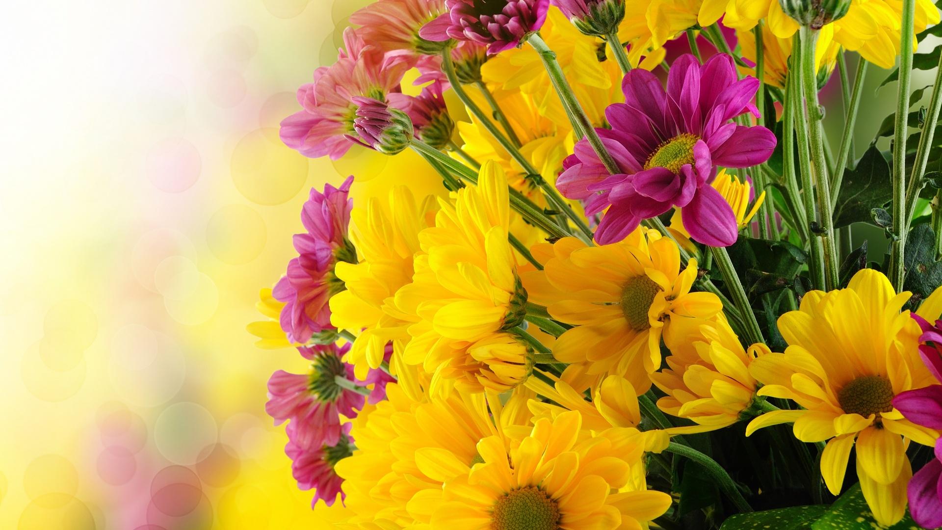 Красочные картинки для поздравления, поздравление